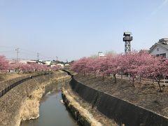 ライブ旅、静岡!