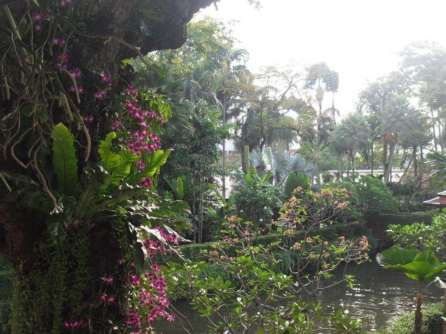 3月の下旬に4日間の休みがとれたため,チャイナエアラインを使ってタイのバンコクへ旅行をしました。例年,癒しを求めてリゾートへ行くのですが,今回は4日間の休みしか取れなかったため,バンコクにある少しでもリゾート感がある「アナンタラ・バンコク・リバーサイド・リゾート&スパ」に宿泊しました。<br /> 今回宿泊したホテルは,とってもリゾート感がある素敵なホテルでした。チャオプラヤー川が正面に流れ,ホテルの中は,とても静かで,緑豊かなホテルでした。<br /><br /><br />3月27日(月) 自宅⇒成田 「ホテル日航成田」<br />3月28日(火) 成田空港⇒桃園国際空港⇒スワンナプーム国際空港<br />       「アナンタラ・バンコク・リバーサイド・リゾート&スパ」<br />3月29日(水) バンコク<br />       「アナンタラ・バンコク・リバーサイド・リゾート&スパ」<br />3月30日(木) バンコク<br />       「アナンタラ・バンコク・リバーサイド・リゾート&スパ」<br />3月31日(金) スワンナプーム国際空港⇒桃園国際空港⇒成田空港