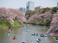 東京九段・見頃の千鳥ヶ淵~イタリア文化会館~北の丸公園を訪れて