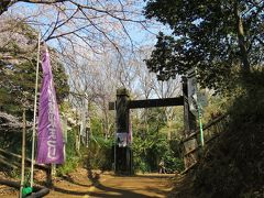 駅からハイキング 緑あふれる小机城址と鶴見川を巡る
