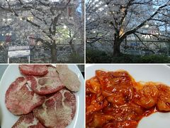 行きつけの焼肉屋で夜桜