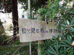行徳野鳥観察舎/観察会 行徳新聞参照春のコース