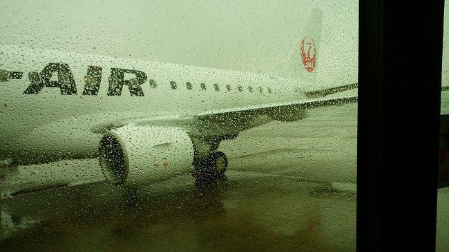 南紀白浜のアドベンチャーワールドへ<br />パンダを見に行くため<br />飛行機に乗ったのだが<br /><br />悪天候のため<br />羽田空港引き返して欠航となりました<br /><br />7:25羽田発<br />8:40到着予定が<br />悪天候のため様子見で上空旋回待機<br />20~30分様子見るとのアナウンスのあと<br />8:50頃9:30迄に天候回復しなければ羽田空港引き返すとのアナウンス<br />9:16 天候回復しないとの判断のようで<br />羽田引き返し決定アナウンス<br /><br />10:10頃羽田空港着陸<br /><br />変更手続きのため 窓口に並ぶが<br />次の南紀白浜行きも欠航が決まっており<br />近隣の伊丹、関空も午後便以降しか空いてないとの事<br /><br />窓口で相談の上<br />次週の私の休み日に変更して頂きました。<br /><br />今回 特典航空券を利用<br />飛行機を降りた際に<br />欠航の場合 ネットで搭乗便変更及びキャンセルできるとの案内パンフレットを貰うが<br />今回の特典航空券のフライト時間を過ぎた予約はエラーとなって <br />スマホで予約変更の画面に進めなかったので<br />窓口に並びました<br /><br />窓口に並びながら スマホで予約確認すればよかったです<br />特典航空券が変更の必要に迫られた場合<br />とりあえず 窓口にならんだ方が良いと思います<br /><br />