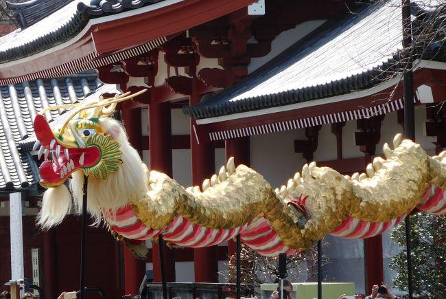 三社祭のプロローグ 浅草神社宮神輿「堂上げ堂下げ」と招き猫の今戸神社