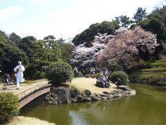 春爛漫の「新宿御苑」♪ Vol.1 桜とパフォーマンスの競演(?)を愛でる(爆笑)♪