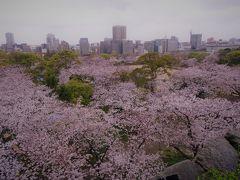 福岡 舞鶴公園さくらまつり