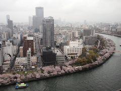 眼下に大川の桜を見る 絶好のグルメスポット「楽待庵」でランチ