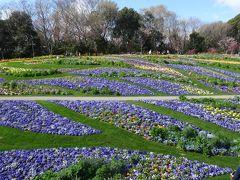 全国都市緑化よこはまフェア   里山ガーデン