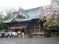 富士山と桜の花を愛でるはずだった旅(3日目の三島・沼津編)