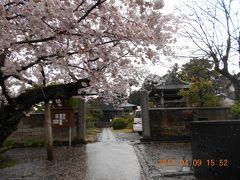 百名城の旅 佐倉城と満開の桜を楽しむ