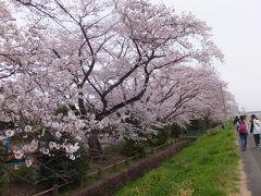 八王子滞在記 2017/04/06-22