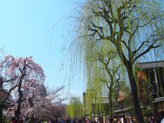 青春18きっぷの旅 2017年春 桜を求めて京都へ 〈3〉 ~八坂神社・祇園白川など~