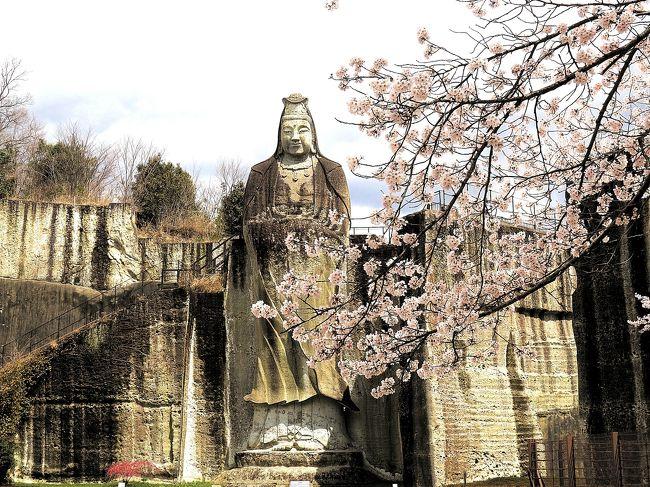 秩父札所巡礼をした友人たちと今度は坂東札所巡礼をすることにしました。<br />総開帳の間に回ろうと思った秩父でしたが<br />今度はリミットはなし。<br />ゆっくり回ろうと思います。<br /><br />札所19番大谷寺は昨年1度お参りに行っています。<br />とても素晴らしいお寺でしたが、旅行記を書きそびれていました。<br />そんな時に見た大谷寺そばの平和観音と桜の写真をみてもう1度行きたくなりました。<br />札所仲間で前回行きそびれた友人と一緒に回ることにしました。<br />事前のチェックでは桜はちょうどよさそうでしたが、前日はかなり雨が降ったため<br />散ってしまったかもという心配がありました。