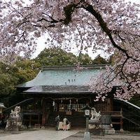 青春18きっぷで、福島の花見山へ (1日目)宇都宮、黒磯散歩→福島へ
