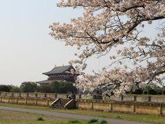 お出かけ・近場の桜見物、鴻ノ池公園,平城京址 に