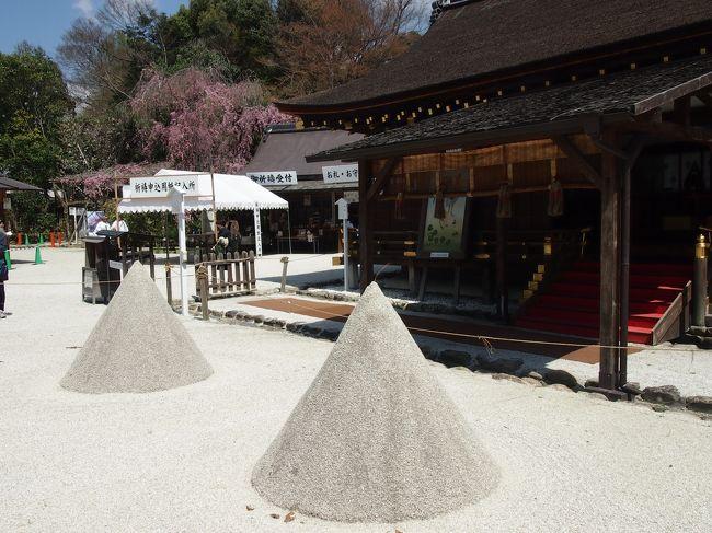 京都に桜を見に行きました!<br /><br />今年は咲き始めから土日は曇りや雨とイマイチな天気。この週末も天気が崩れそうだなぁと思っていたら休日出勤の振替休日を晴れの平日にゲット!去年は曇りの中の桜観光でしたが今年は青空の写真が撮れそうです(^^)<br /><br /><br />*上賀茂神社<br />*妙満寺<br /> 八坂神社<br /> 円山公園<br /> 知恩院<br /> 平安神宮<br /><br />◆春の京都2017 一人旅 その2 ~八坂神社、円山公園、知恩院、平安神宮~<br />https://4travel.jp/travelogue/11232399<br /><br />過去の春の京都<br />◆春の京都2016 一人旅 醍醐寺、本満寺、京都御苑、安井金比羅宮<br />https://4travel.jp/travelogue/11170483<br /><br />◆春の京都2014 一人旅  平野神社、千本釈迦堂、水火天満宮<br />https://4travel.jp/travelogue/11110420
