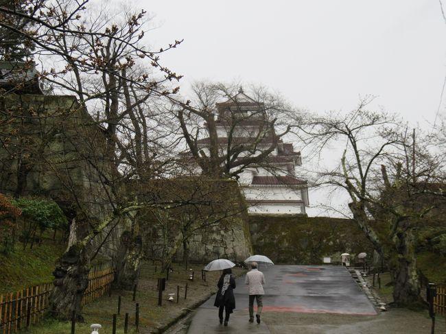 福島県の桜名所巡りのツアーに東京から参加した。4月11,12日の二日間だったが、今年は寒い日が多く、開花がどこも遅れた。特に11日は寒い上に雨が降り、しかもどこもつぼみ状態の桜ばかりで、がっかりしていたが、二日目は天気もよくなり、ピークは福島市の花見山でやってきた!<br /><br /><br />既にクチコミでそれぞれの場所を紹介したが、ここでは順を追って、初日の行程の写真をのせる。<br /><br />初日の最初の訪問地が会津若松城(鶴ケ城)。