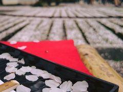 醍醐寺の花見〜太閤秀吉のお花見パーティーへ〜