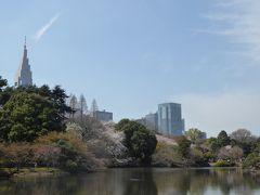 春爛漫の「新宿御苑」♪ Vol.3 日本庭園と満開の桜の競演♪