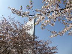 春爛漫の優雅な横浜♪ Vol3 ☆横浜マリンウォークで優雅にショッピング♪