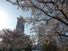 春爛漫の優雅な横浜♪ Vol8 ☆運河パークのみなとガーデン 美しいアーバンガーデンと咲き残る桜♪