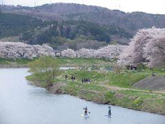 2017春の南東北3つの桜名所めぐり(1)白石川堤一目千本桜ほか