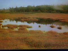 1986年(昭和61年)9月栃木(大清水 物見山登山 奥鬼怒湿原 奥鬼怒温泉郷)を歩きます。