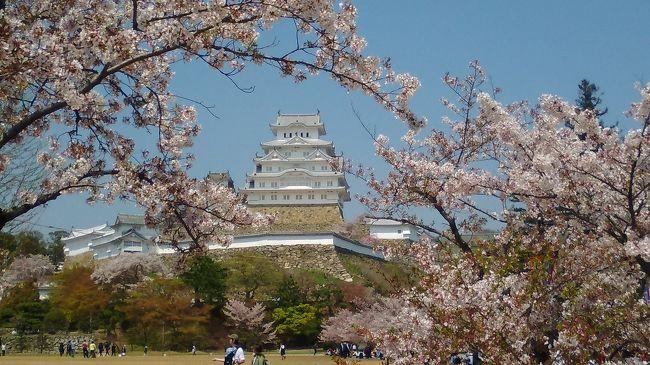 桜の満開は過ぎたけれど姫路城はきれいです