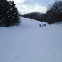 路線バスに乗り、一山超えたらスキー場。