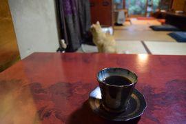 ひとりお花見部 2017② 東山・岡崎・四条河原町で 花より団子、猫、乙女。