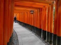 京都・(奈良公園)
