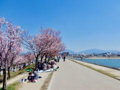 大阪府内で一番に花見ができる 「狭山池公園」