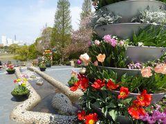 春爛漫の優雅な横浜♪ Vol21 ☆山下公園 スペイン広場から立体感のある庭園へ♪