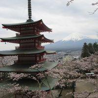 晴れおじさん「外人さんに囲まれてThe Japan」を撮る
