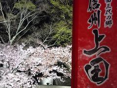 上田の夜桜