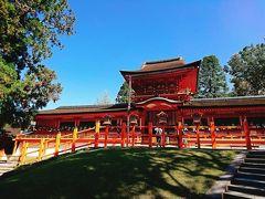 京都-奈良、名残の桜と美術館巡り 3日目