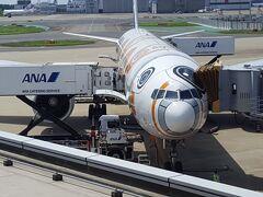 初夏のワシントンDCその1 ANA直行便で移動&アーリントン散策