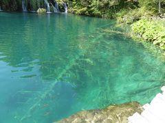 池に沈んだ倒木の石灰華が幻想的~16年夏クロアチアなど4カ国周遊8月8日その3プリトビッツェ上湖①