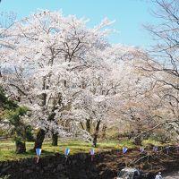 2017年4月、エクシブ軽井沢(懐古園part1)