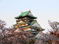 大阪の桜巡り 2017年