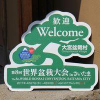 第八回世界盆栽大会を楽しむ。スーパーアリーナ会場では1億円でも成約済みに驚く。
