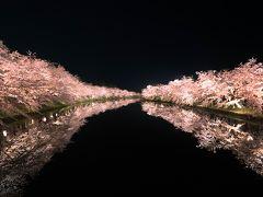 弘前城の桜はやっぱり凄かった!!