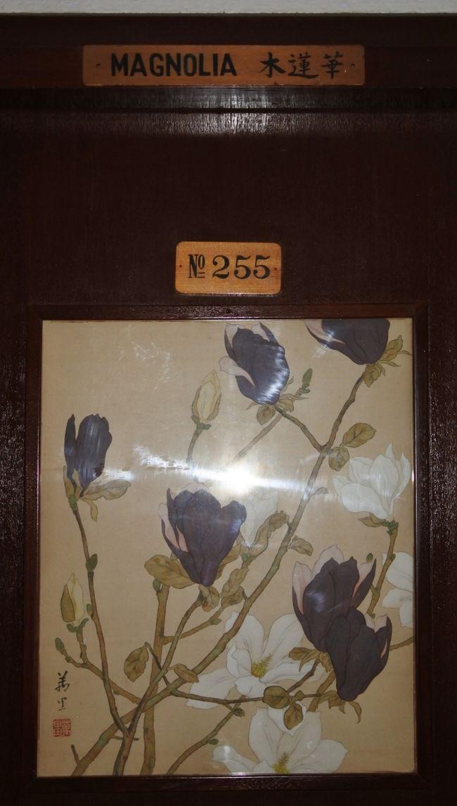 花御殿255号室「木蓮華」に泊まる。