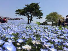 茨城の旅行記
