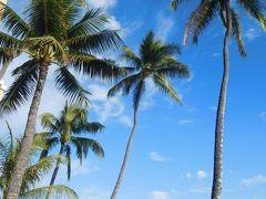 ≪ 2017年 ハワイで楽しんだ母達の古希祝い Vol.1 ≫ ~準備からハワイ到着まで~