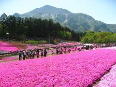 '17 GW埼玉 花&城さんぽ1 羊山公園の芝桜