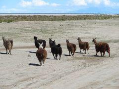 ボリビア 「行った所・見た所」 ウユニ空港からウユニ塩湖に