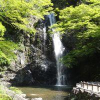 勝尾寺からの帰りに、箕面大滝を見て来ました。