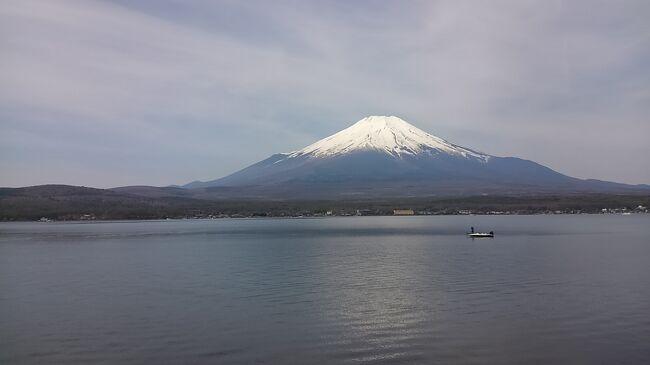 今年のGWは山中湖&忍野八海旅行。<br /><br />中国に勤務していた友人が日本勤務に復帰し、久々の3人国内旅行が実現。<br /><br />山中湖の奥に間近に見える富士山に、<br />忍野八海の神秘的なブルーの池に魅了されました。<br /><br />
