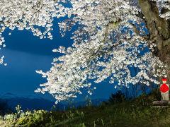2017-福島の桜めぐり